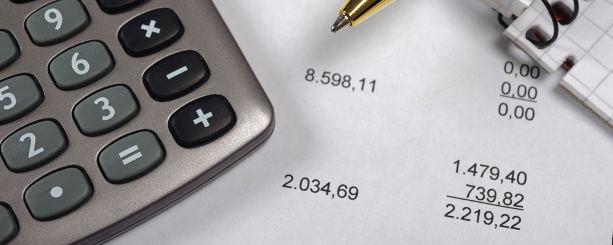 budgetkalkyl